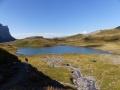 Moutons au lac d'Anterne août 2015 Photos Franck M..JPG